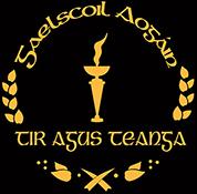 Gaelscoil Aogáin